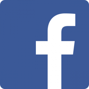 facebook giovani marmotte